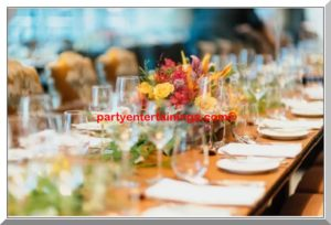 partyentertainings.com