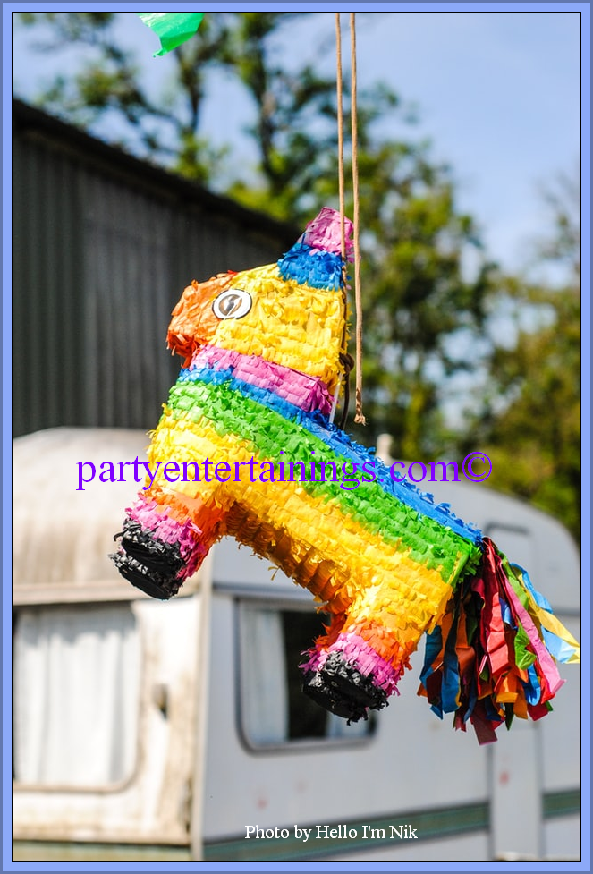"""birthday pinata"" partyentertainings"""